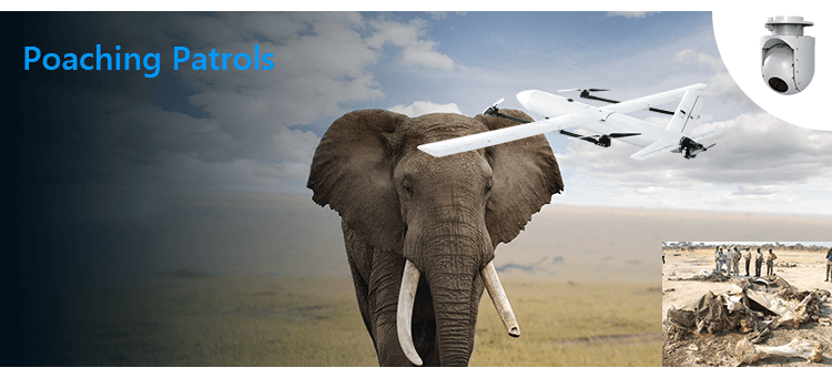 Poaching Patrols